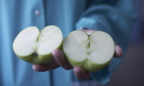 La fraîcheur du fruit