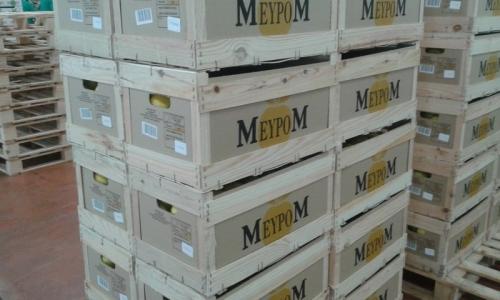 palette de caisse Meypom cat II