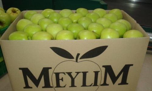Bushel Meylim