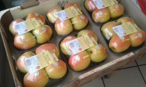 barquette rosée 4 fruits marque distributeur
